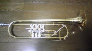 Dvc33