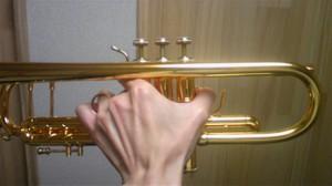 左手は楽器を握りしめないで、人差し指の上に乗せ軽くそえる程度にします。